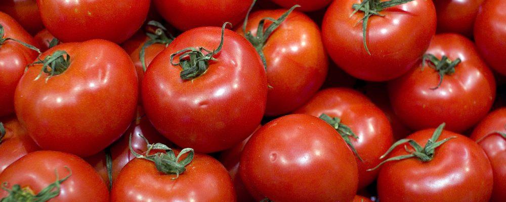 Mejores tomates de Madrid