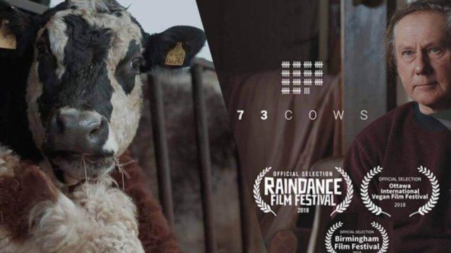 73 Cows disponible en Vimeo