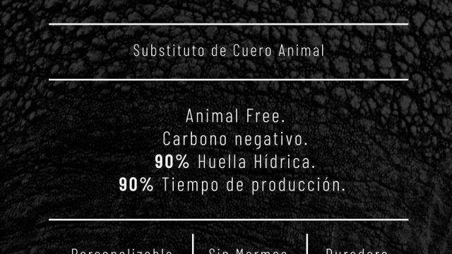 Empresa mexicana crea cuero a partir de bacterias
