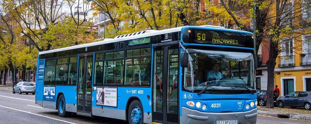 Los perros podrán subir a los autobuses de la EMT en Madrid